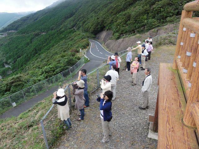 内山峠アカハラダカ観察所