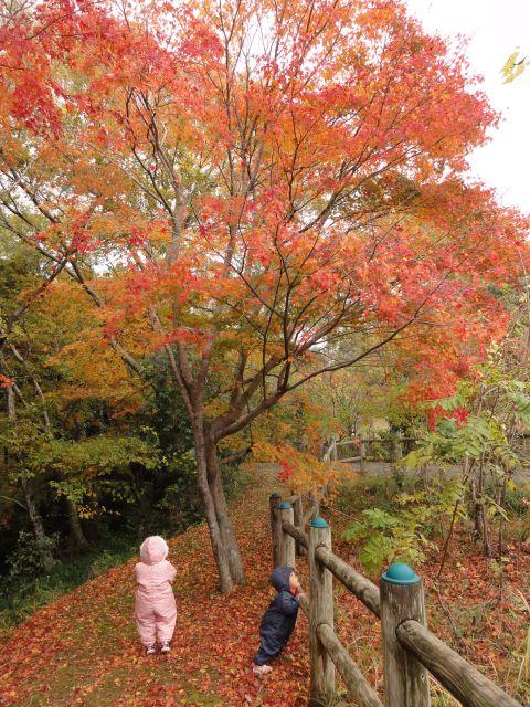 松原自然公園7