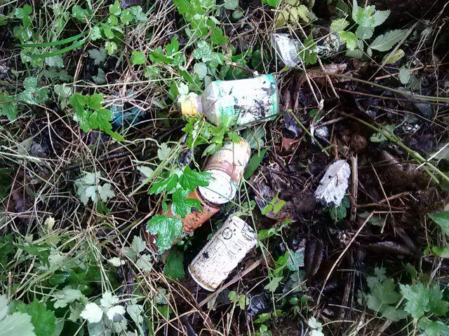 空き缶・ゴミ