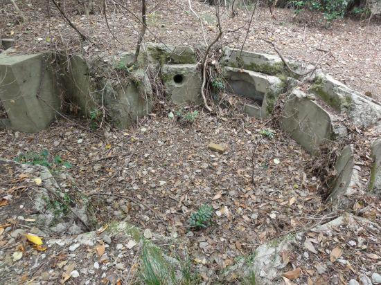 芋崎砲台への道15