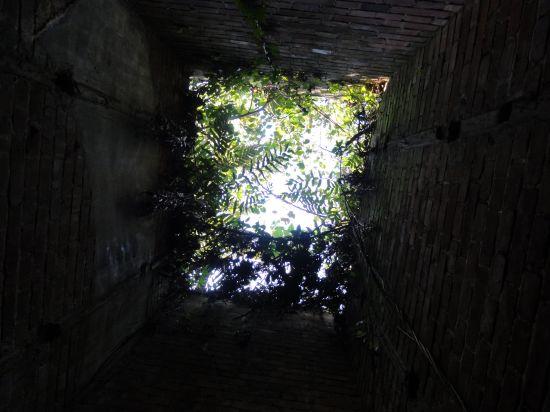 芋崎砲台への道28