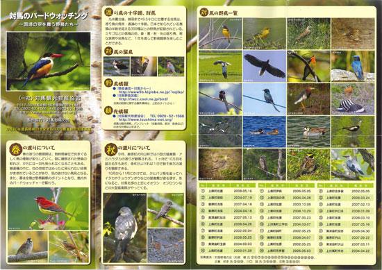 bird_tsushima-1.jpg
